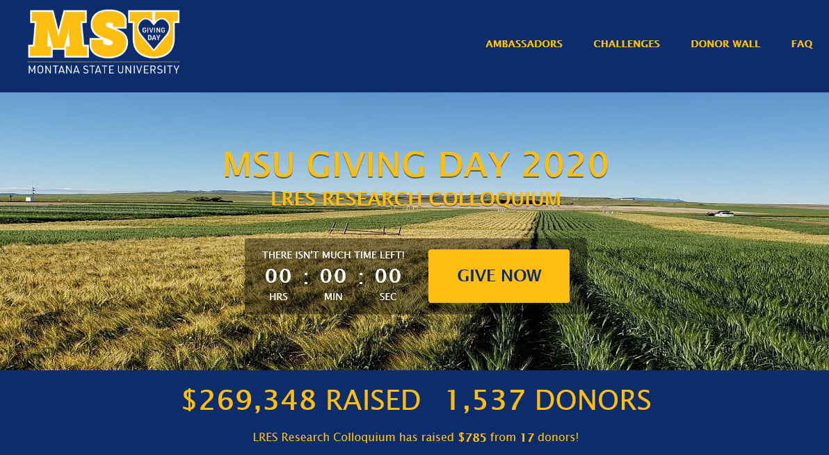 MSU Giving Day