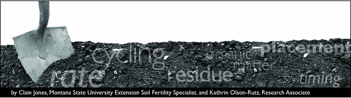 The Soil Scoop Header - shovel and soil