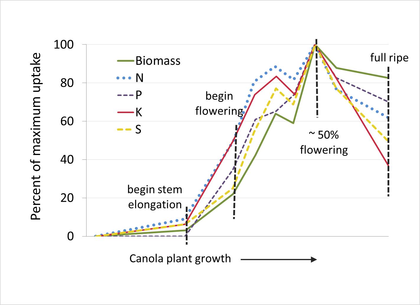 nutrient uptake - MSU Extension Soil Fertility | Montana