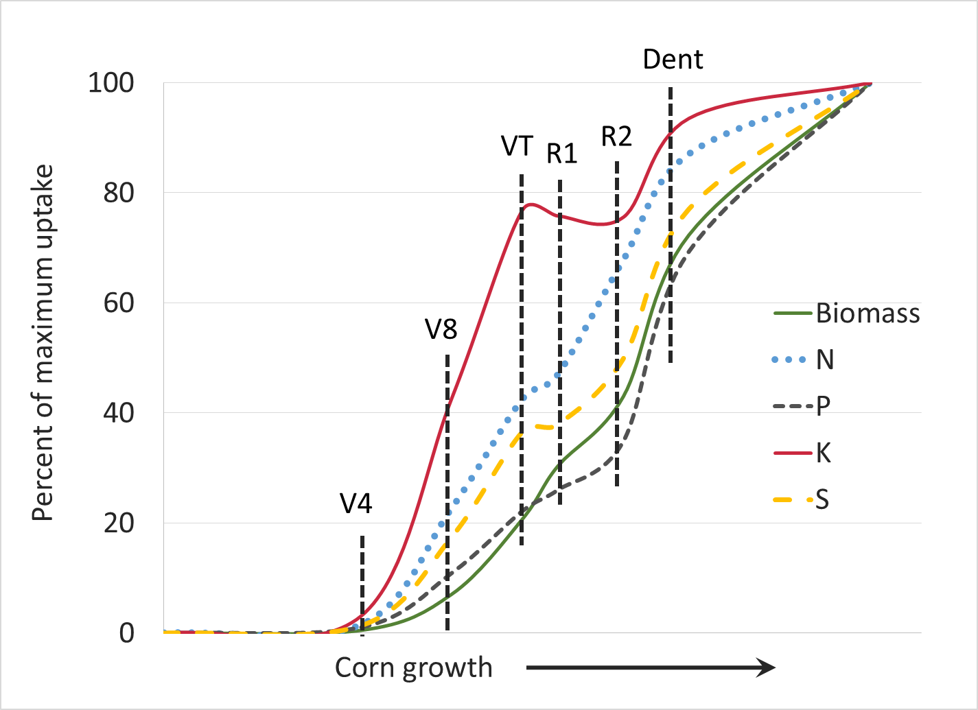 corn nutrient uptake