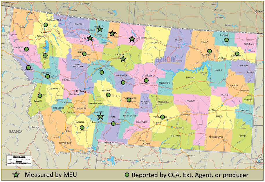 Figure 1. Montana Counties in which fields iwth soil pH < 5.5 have been found